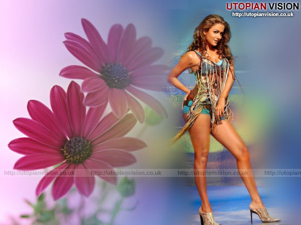 Amrita_Arora_showing_sexy_and_hot_legs