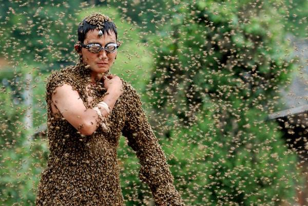Bee-Attracting Competition, China