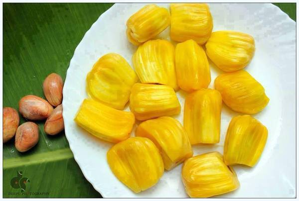fruits-jackfruits