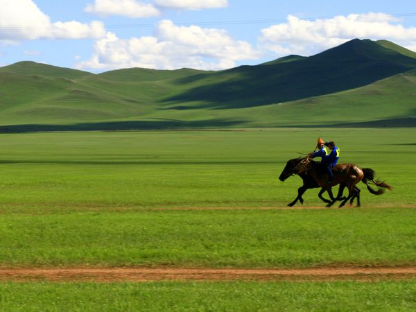 young-boy-races-horses-mongolian