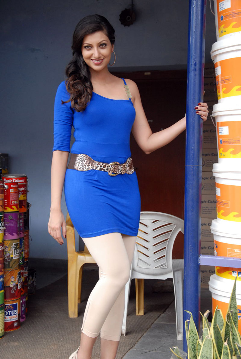 Hamsa Nandini Latest Hot Photos In Blue Mini Skirt