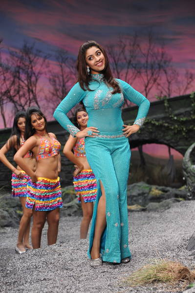 Richa Gangopadhyay hot photo gallery
