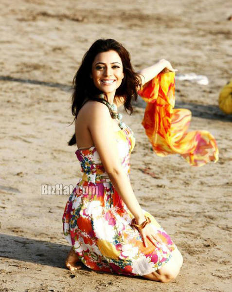Nisha Agarwal hot stills