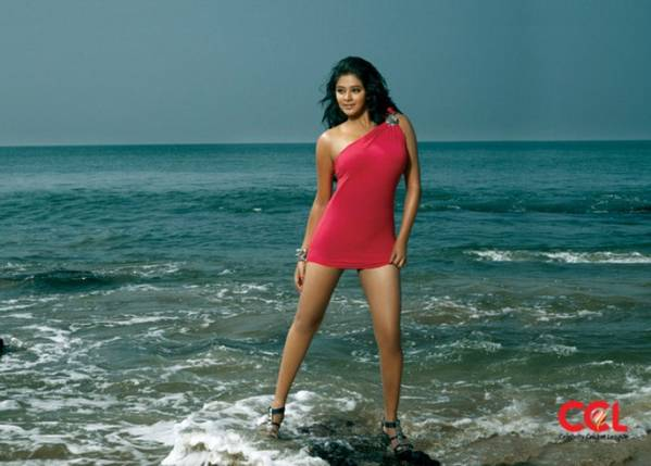 ccl 2012 calendar spicy stills
