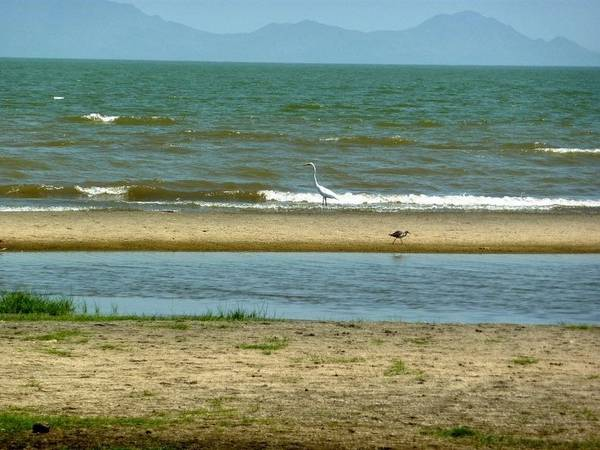 Lake Turkana - The Jade Sea