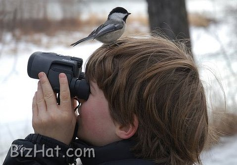 young_ornithologist